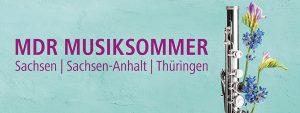 musiksommer-banner-zweitausendneunzehn-106-resimage_v-variantBig24x9_w-1024